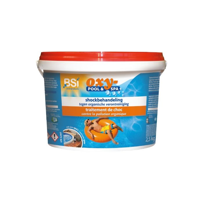 BSI 01378 Oxy-Pool and Spa 2